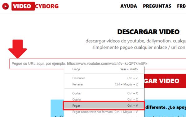 descargar video de pagina web desde videocyborg