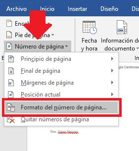 opción de formato de número de página