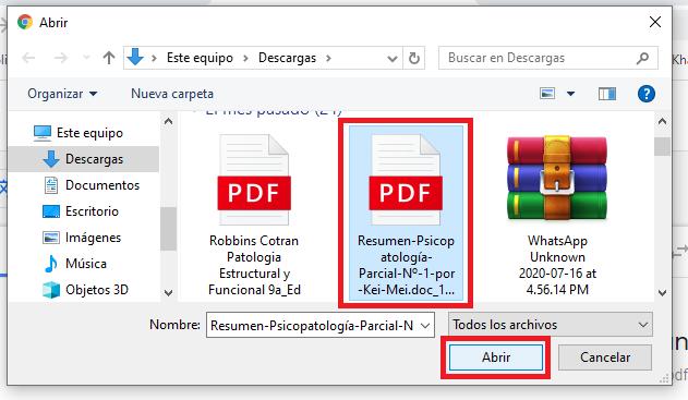 seleccionar pdf para traducir