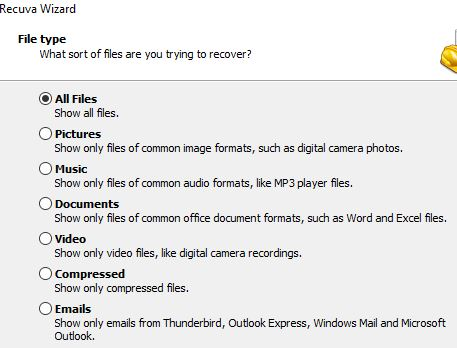 Ventana del Recuva que te pregunta qué tipo de archivo estás buscando.