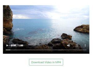"""Página de DownloadInstagramVideos con una versión pequeña del vídeo de Instagram y el botón """"Download Video in MP4""""."""