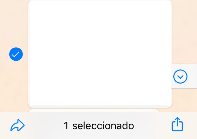 Chat de WhatsApp mostrando el icono del símbolo de compartir y una foto con una marca de verificación.