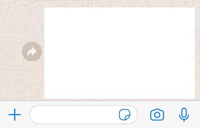 """Foto reenviada en un chat de WhatsApp sin el aviso que dice """"Reenviado""""."""